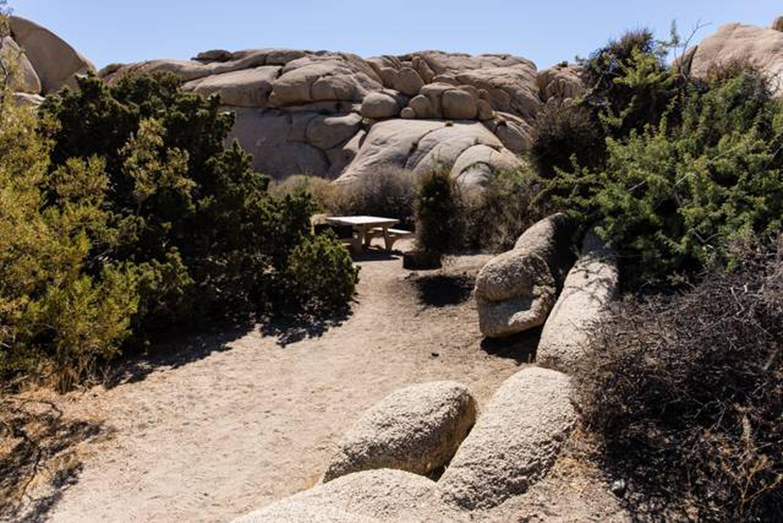 Jumbo Rocks site 4bBeautiful Views