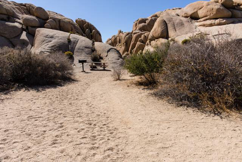 Jumbo Rocks site 5bBeautiful Views
