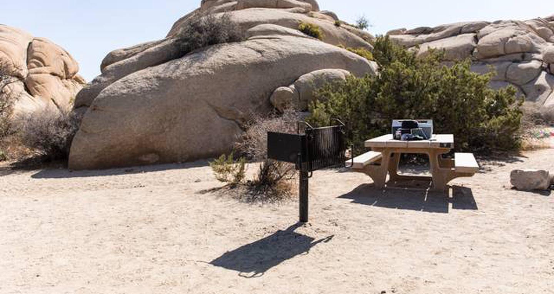Jumbo Rocks site 7View of campsite