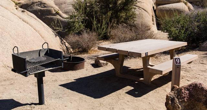 Jumbo Rocks site 9View of campsite