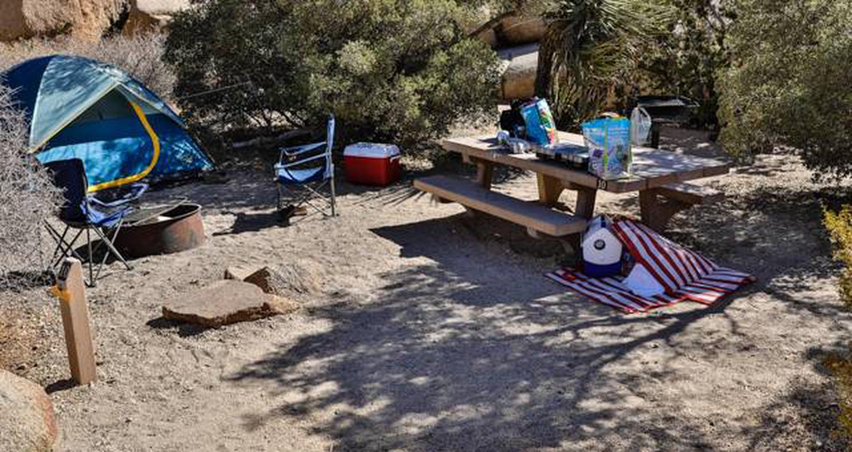 Jumbo Rocks site 10View of campsite