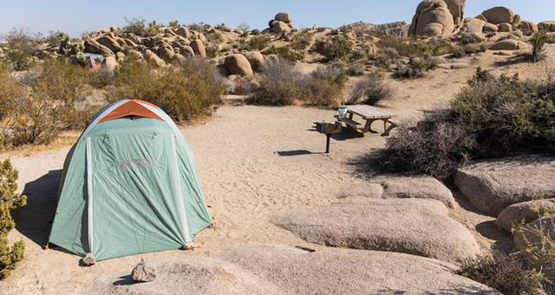 Jumbo Rocks site 13View of campsite