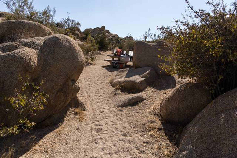 Jumbo Rocks site 15Path to campsite