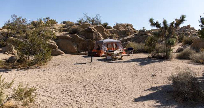 Jumbo Rocks site 16View of campsite