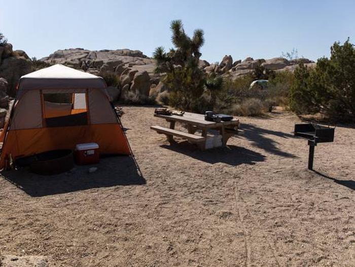 Jumbo Rocks site 16Another view of campsite