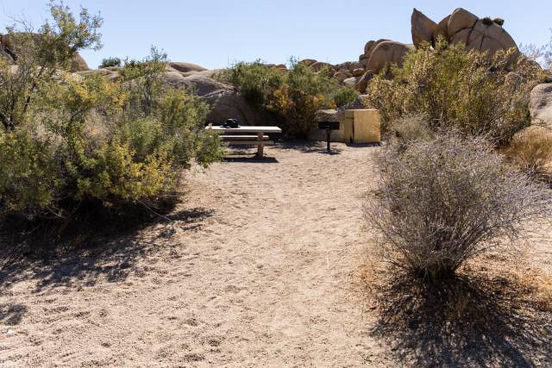 Jumbo Rocks site 18Path to campsite