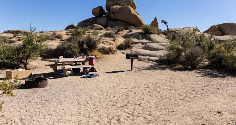 Jumbo Rocks site 19View of campsite