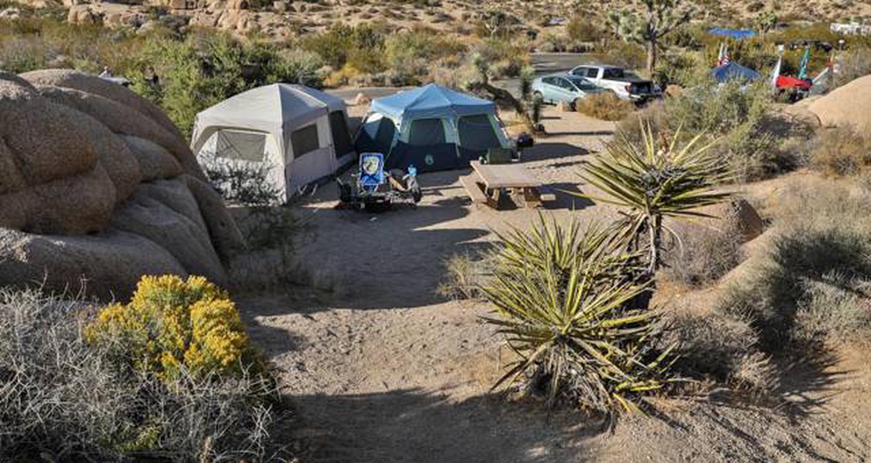 Jumbo Rocks site 21View of campsite
