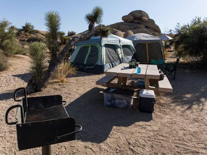 Jumbo Rocks site 22Another view of campsite