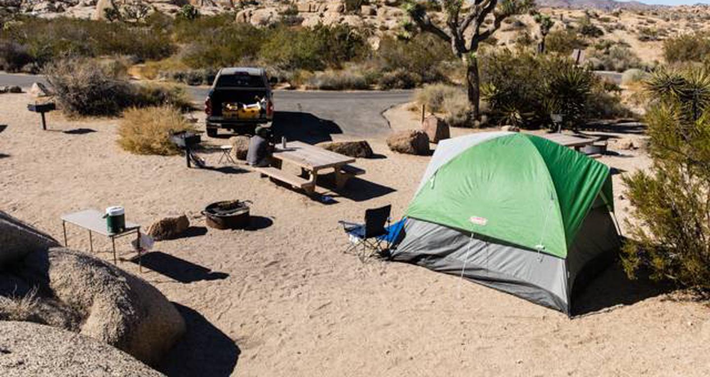 Jumbo Rocks site 23View of campsite
