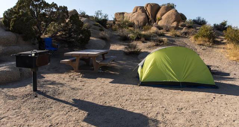 Jumbo Rocks site 27View of campsite