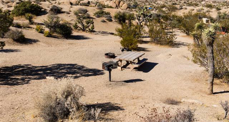 Jumbo Rocks site 30View of campsite