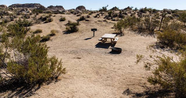 Jumbo Rocks site 31View of campsite