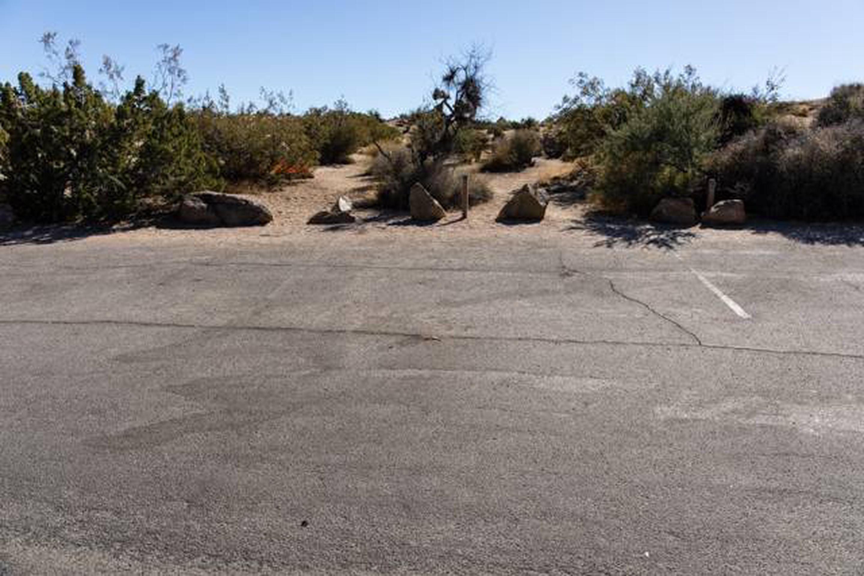 Jumbo Rocks site 31Parking space for campsite