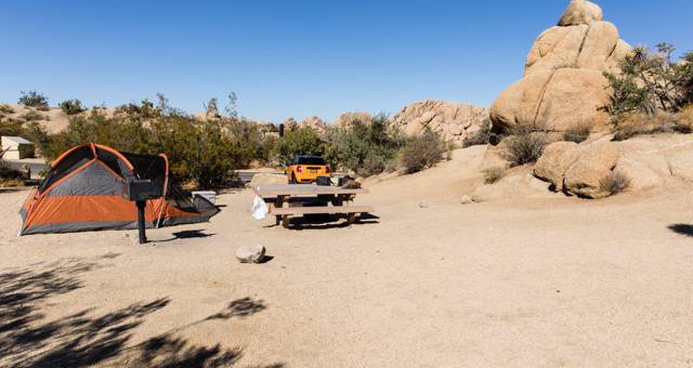 Jumbo Rocks site 32View of campsite