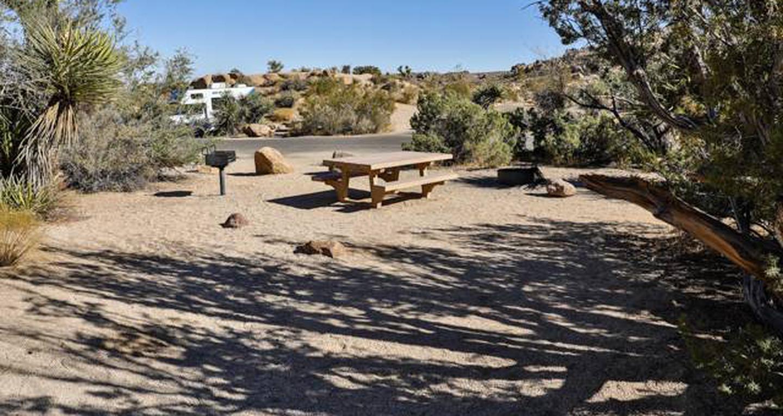 Jumbo Rocks site 34View of campsite