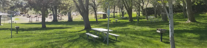 LePage Park Tent Site 6