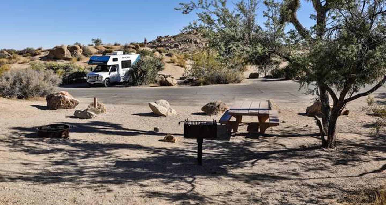 Jumbo Rocks site 35View of campsite