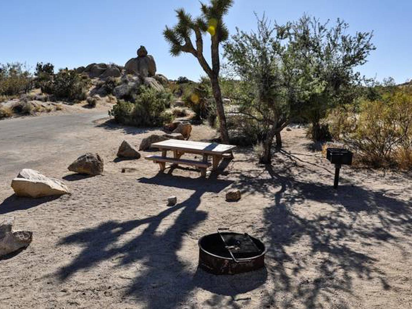 Jumbo Rocks site 35Another view of campsite