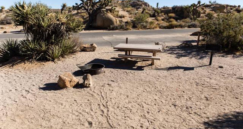 Jumbo Rocks site 37View of campsite