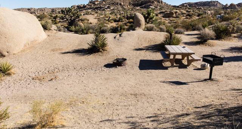 Jumbo Rocks site 38View of campsite
