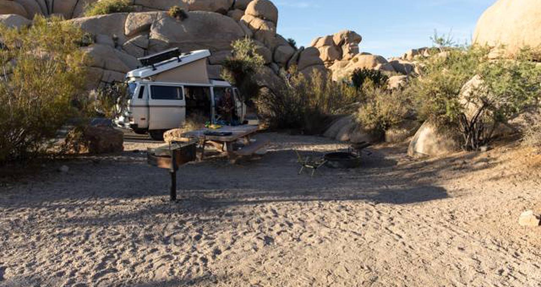 Jumbo Rocks site 41View of campsite