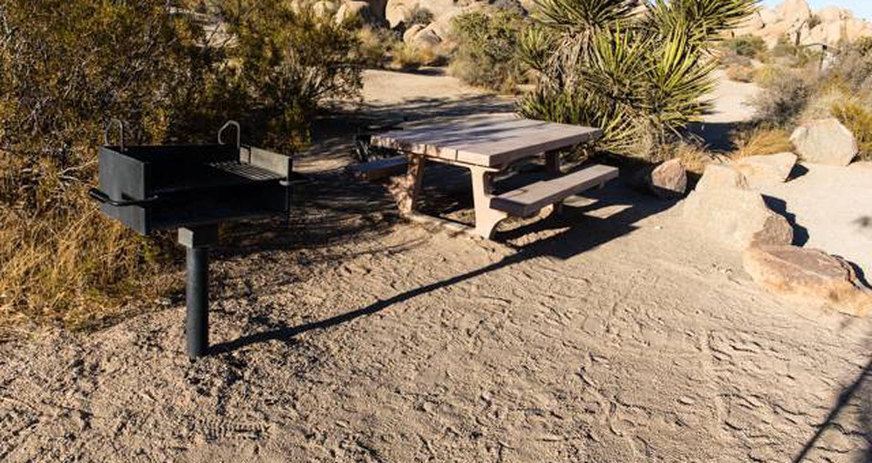 Jumbo Rocks site 46View of campsite