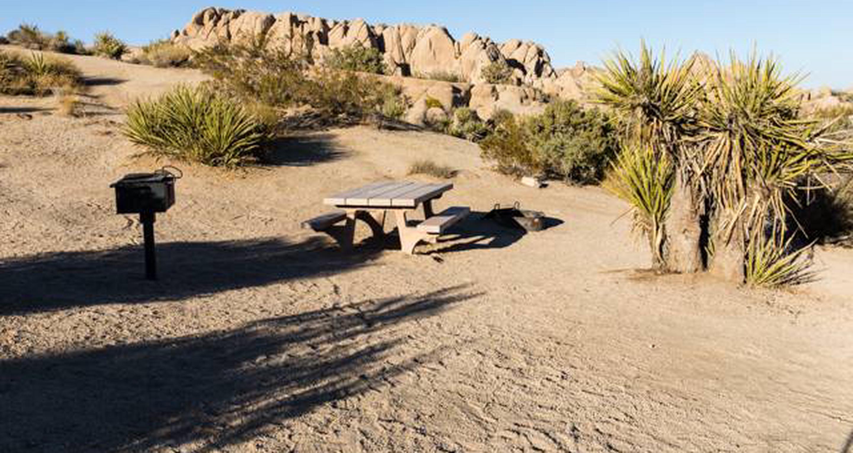 Jumbo Rocks site 47View of campsite