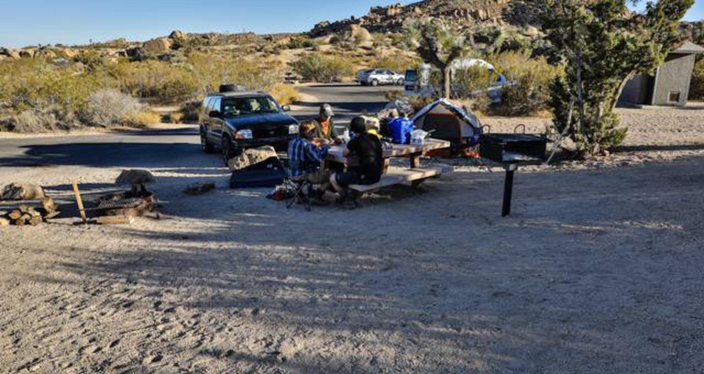 Jumbo Rocks site 48View of campsite