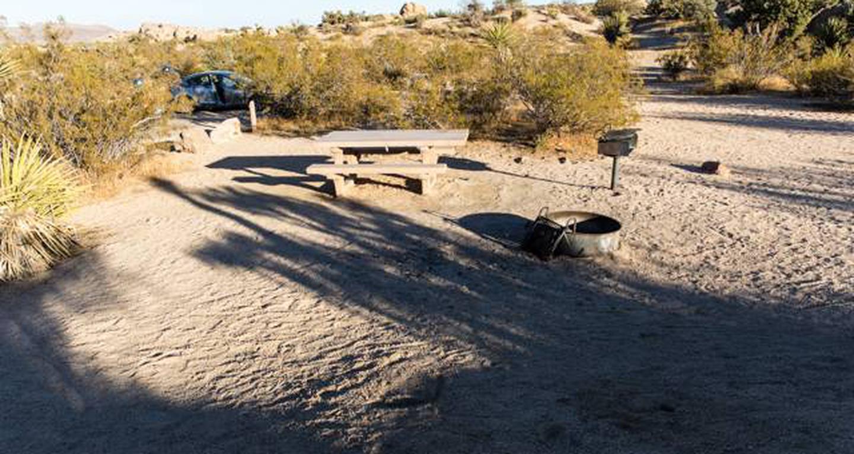 Jumbo Rocks site 50View of campsite