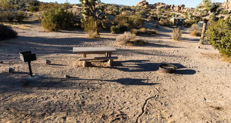Jumbo Rocks site 51View of campsite
