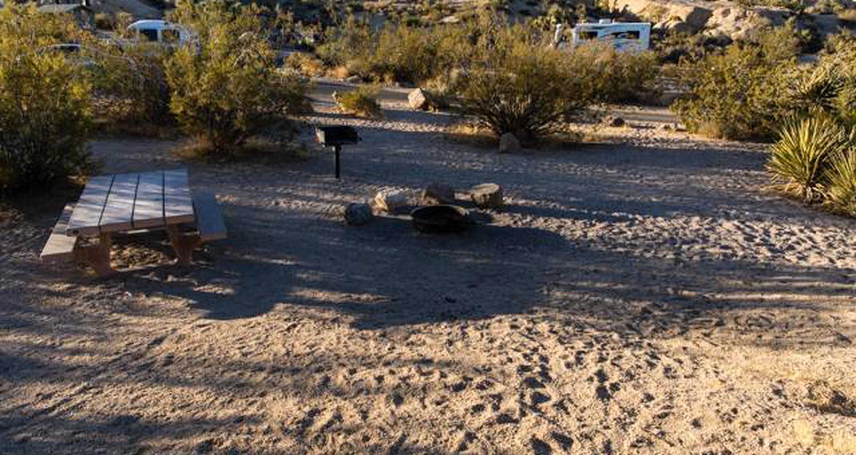 Jumbo Rocks site 54View of campsite
