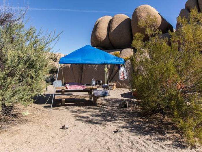Jumbo Rocks site 60Another view of campsite