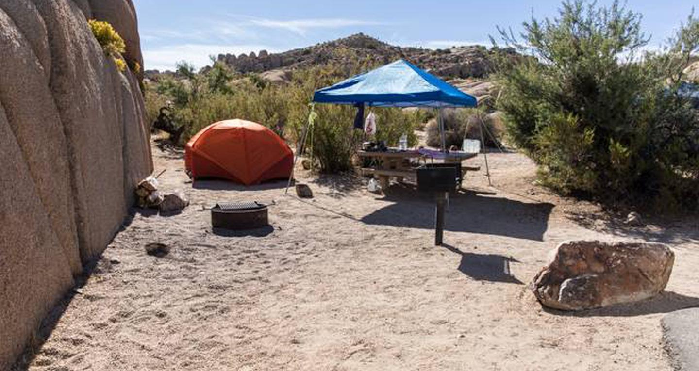 Jumbo Rocks site 60View of campsite