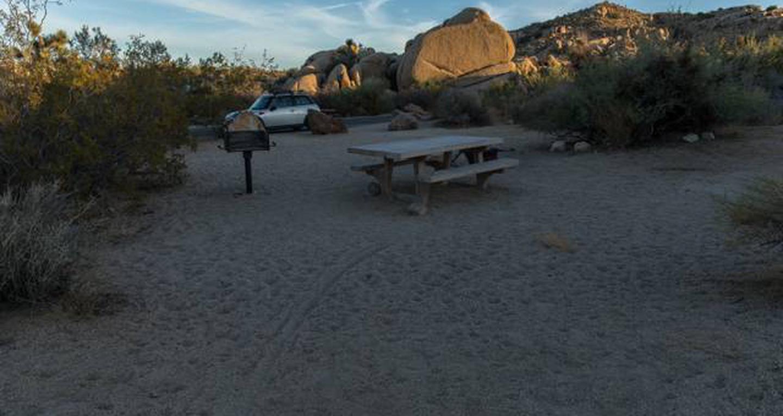 Jumbo Rocks site 61View of campsite