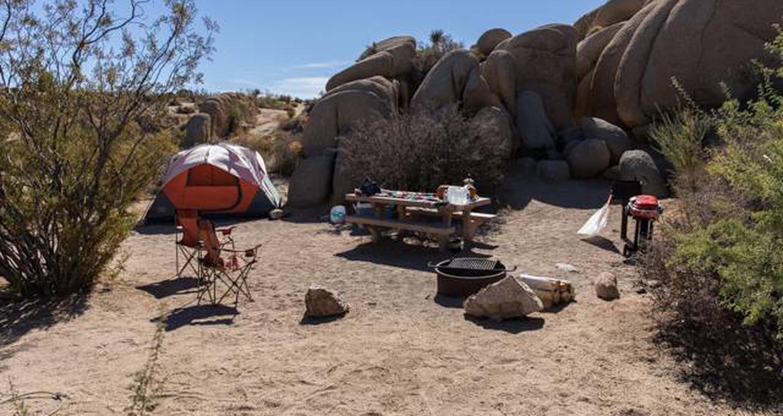 Jumbo Rocks site 62View of campsite