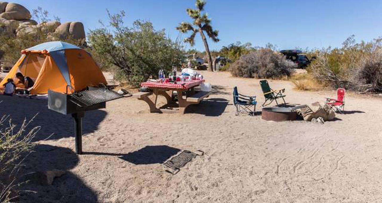 Jumbo Rocks site 64View of campsite