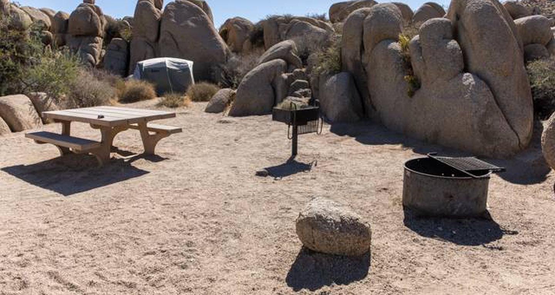 Jumbo Rocks site 65View of campsite