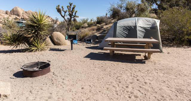 Jumbo Rocks site 67View of campsite
