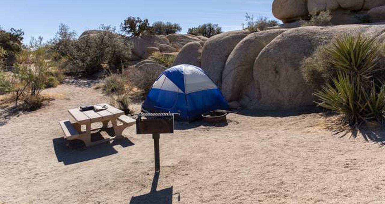 Jumbo Rocks site 68View of campsite