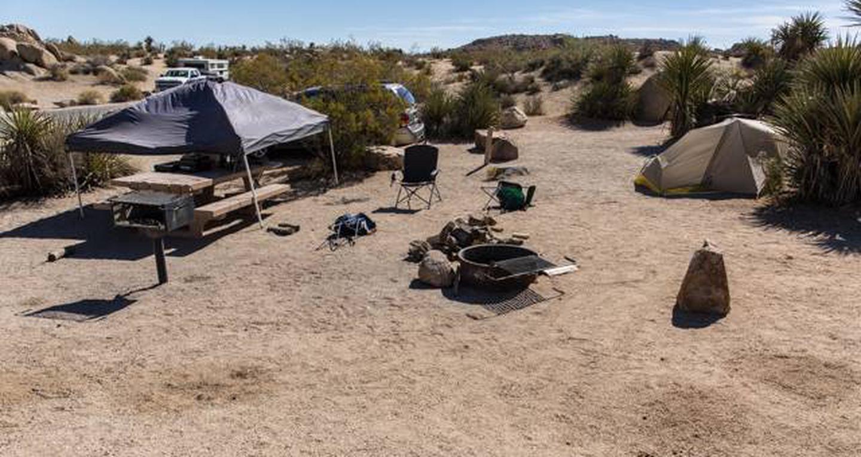 Jumbo Rocks site 72View of campsite