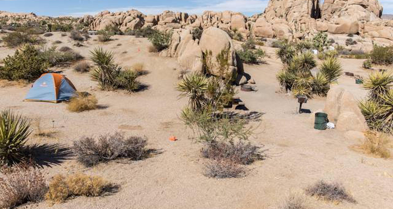 Jumbo Rocks site 73View of campsite