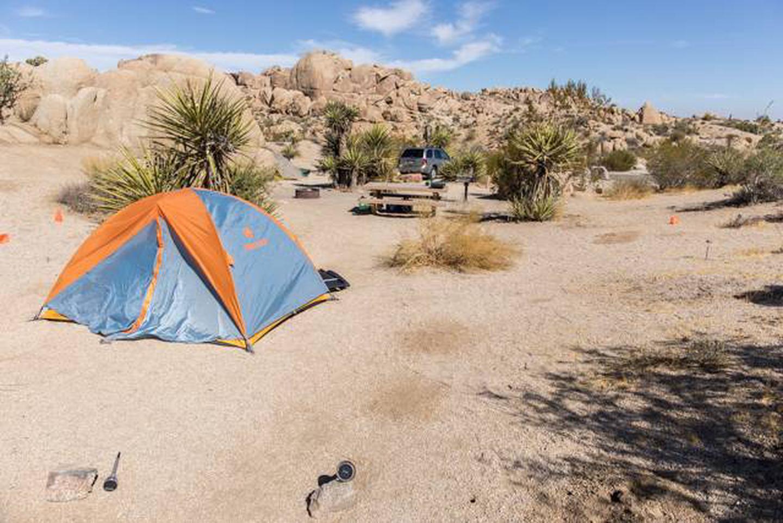 Jumbo Rocks site 73Campsite