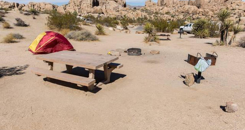 Jumbo Rocks site 74View of campsite