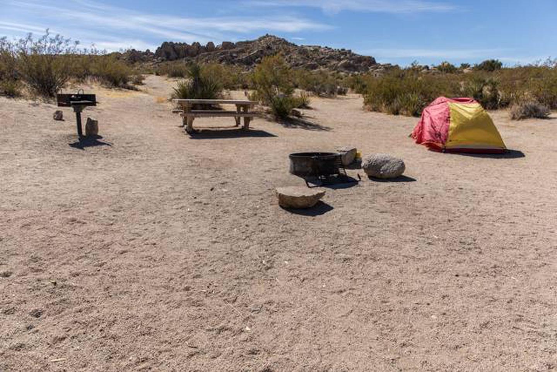 Jumbo Rocks site 74Campsite
