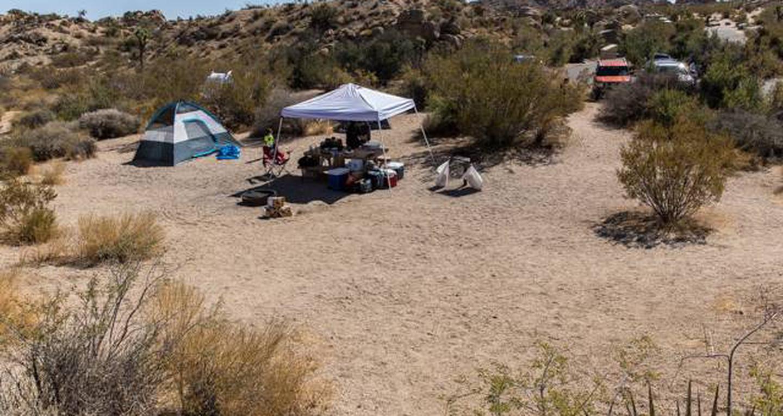 Jumbo Rocks site 78View of campsite