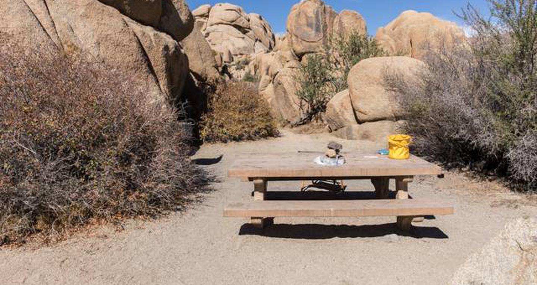 Jumbo Rocks site 79View of campsite