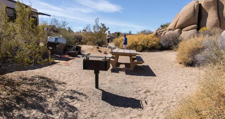 Jumbo Rocks site 81View of campsite