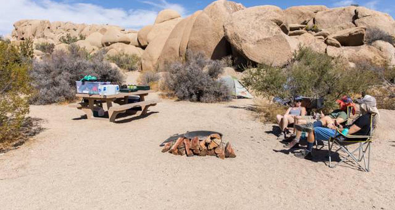 Jumbo Rocks site 82View of campsite