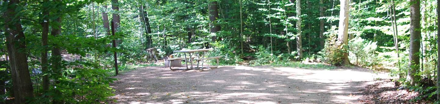 AuTrain Lake Campground site #28 full site view with fire pit and picnic table.